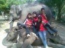 Mahout dan Petugas Taman Satwa Kandi