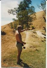 Tasmania capers