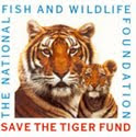 Help Save the Tiger