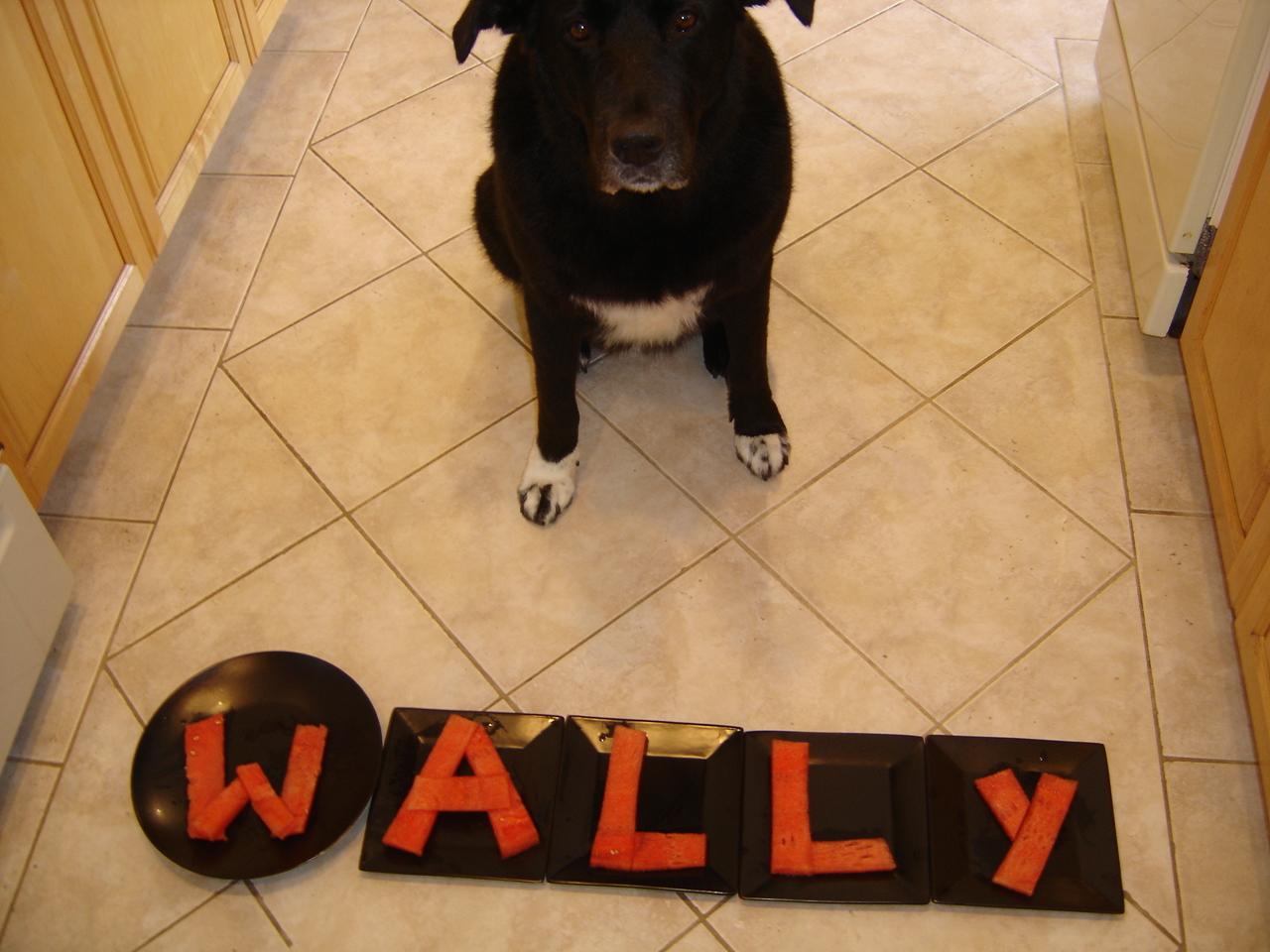 [Randi+-Wallymelon!+036.jpg]