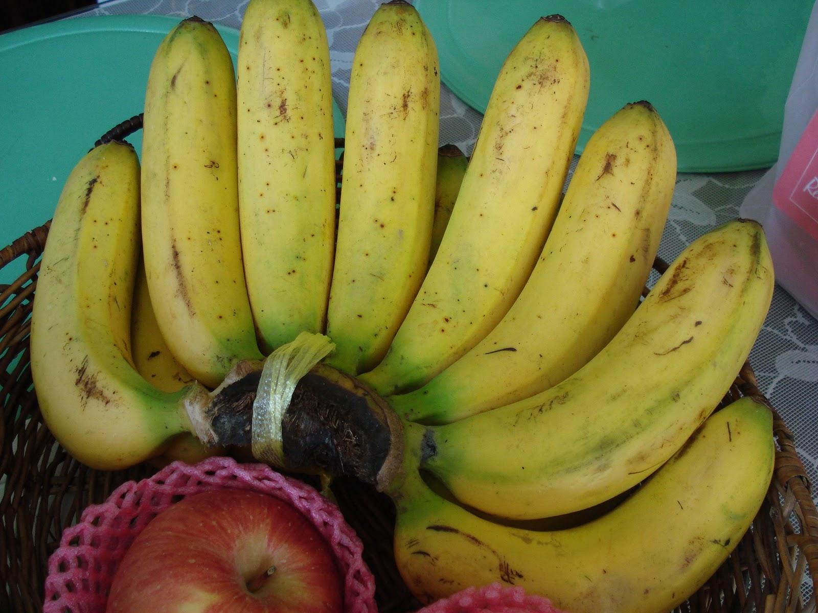 lakatan banana flesh extract as an