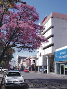 esquina 9 de Julio y San Nicolas Bari