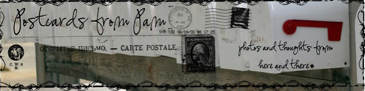 Postcards from Pam