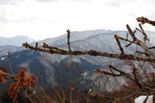 牛曳山からの眺め