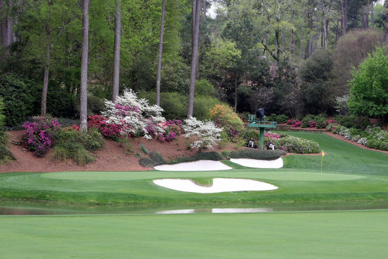 http://2.bp.blogspot.com/_Mpphm-adxxc/TUt4x5K-SoI/AAAAAAAAAhY/dYd7l7kgGNo/s1600/12th+at+Augusta.jpg