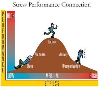 visione dello stress performance