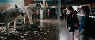 képlet farkas