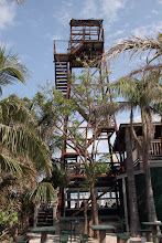 Two Daves' diving tower