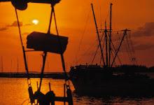 sunrise at stock island.