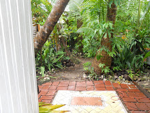 a look in the garden.