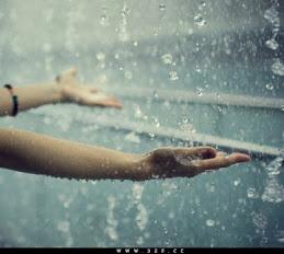 تحت المطر