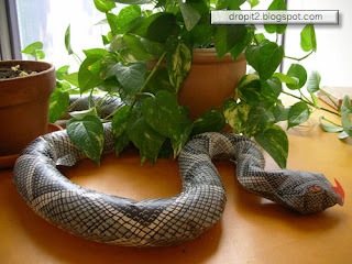 Drop It :The is Snake In Your Garden