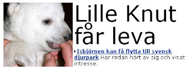 Knut-rubrik