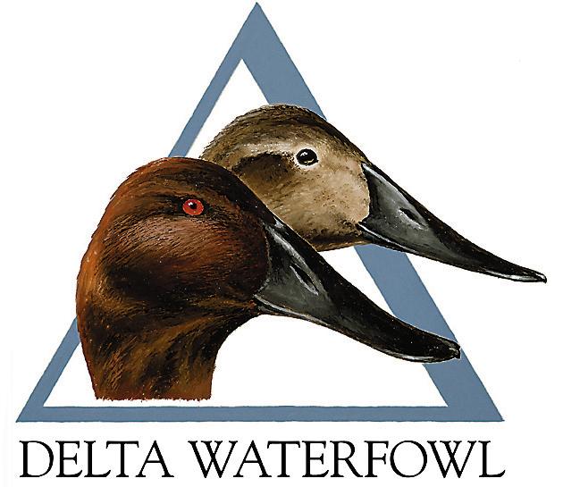 Delta Waterfowl Wallpaper Delta waterfowl held their
