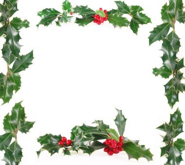 Christmas Holly and Berries Border