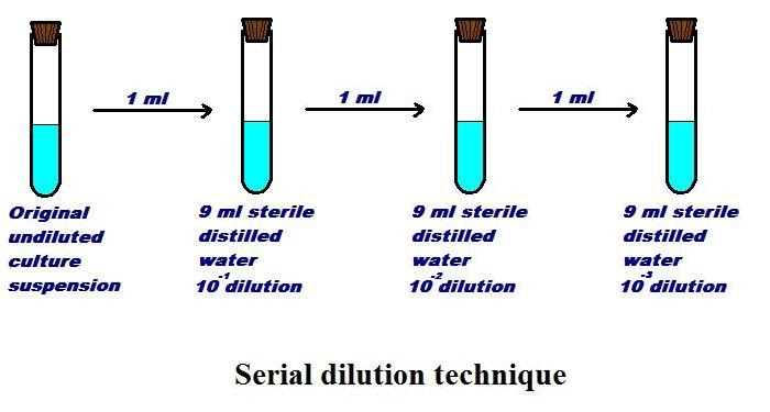 Principle Microbiology Serial Dilution Method