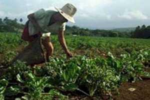 Gobiernos liberales de guatemala