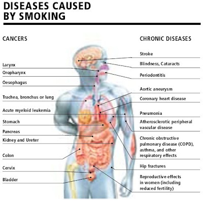 efek merokok aktif