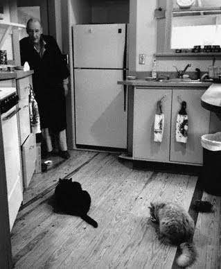 William Burroughs in his kitchen with two cats. Photograph copyright: CORBIS and Allen Ginsberg.
