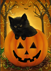The Halloween Kitty de Melissa Dawn