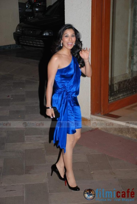 Sophie Chaudhary Blue dress Christian Louboutin shoes Sanjay Manyata Dutt Wedding anniversary bash