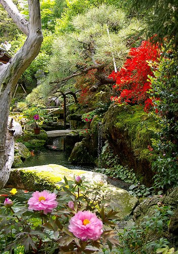 [jardin+japones+3]