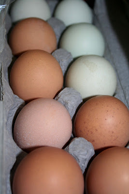 Are eggs good after the expiration date in Australia