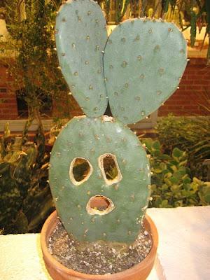 kaktus tersenyum