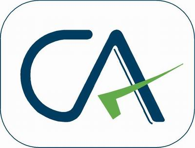 Suggested Answers For Ca Final Nov 2010. CA Logo