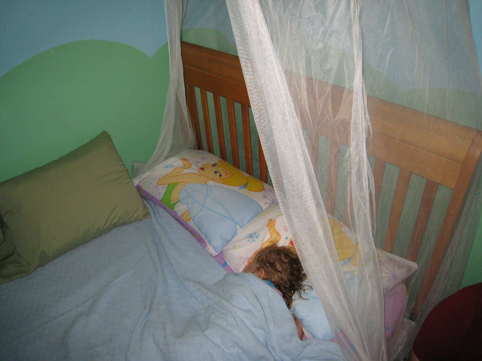 Shearer Big Girl Bed