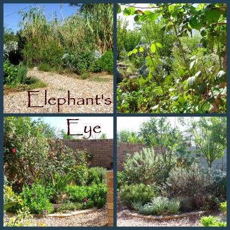 Paradise Garden Long Beach Ca