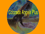 Colorado Angels Plus