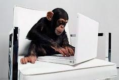 Macaco programador