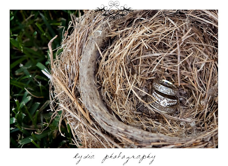Picture of Rosemary and Jared's wedding rings in a bird's nest in Santa Rosa California