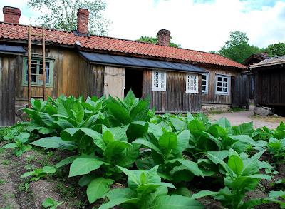Luostarinmäki in Turku, Finland