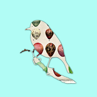 Bird egg print from the graphics fairy aren t those pink eggs so