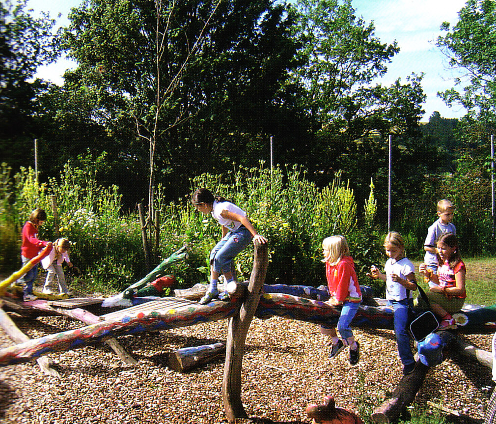 Hastings School Playground Design: Logs For Climbing
