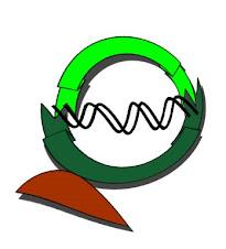 El Reloj Molecular de la Vida