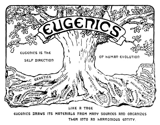 eugenics term paper The term eugenics and its modern field of study were first formulated by francis galton in 1883, drawing on the recent work of his half-cousin charles darwin.