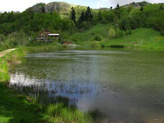 Taul Brazi Rosia Montana Apuseni