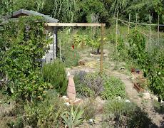 Le jardin d'Olives & Artichokes