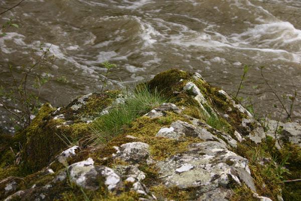 Argenton River