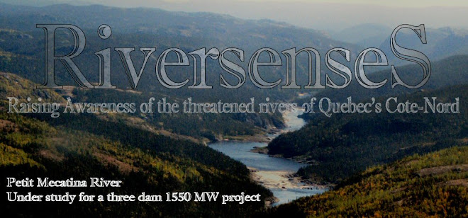 riversenses