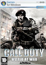 CALL OF DUTY WOLRD AT WAR