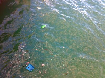 La acumulación de plásticos en los océanos, un proceso con graves efectos a largo plazo.