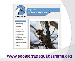 SEO SIERRA GUADARRAMA