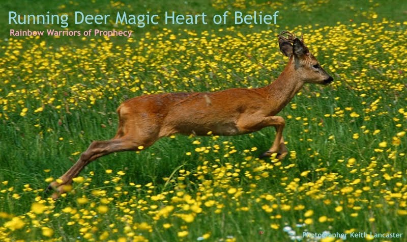 Running Deer, your Heart of Belief