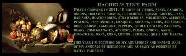 Rachel's Tiny Farm