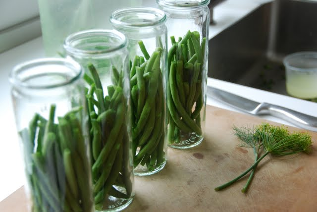 hungry tigress » spicy pickled green beans:
