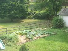 2008 Traditional Garden